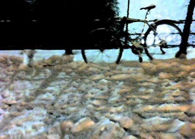Fahrrad 19