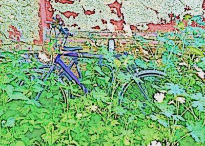 Fahrrad 22